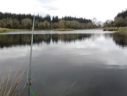 Smallest lake at Ballaghmore