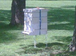 meadow drive apiary