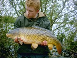 23lb 4oz common