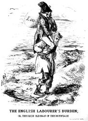 The Irish Burden