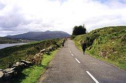The FAmine road, Sligo