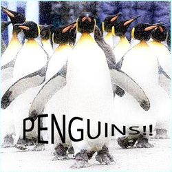 Penguin Charge Attack