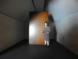 The left attic - the Wardrobe room