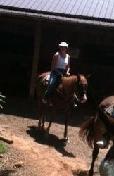 Horse back riding Tennessee