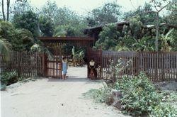 Pak Tung Chai  1966