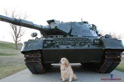 Tank Buddy