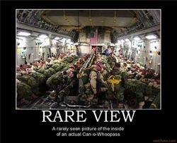 Rare View