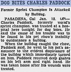 Dog Bites Charley
