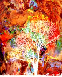 Infared tree on Abstract