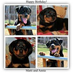 Happy Birthday Matti and Annie