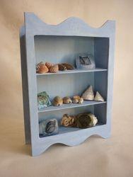 Shell Seeker Shelf