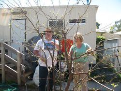Paul and Deb discuss pruning tips