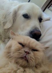 Brotherly Love!