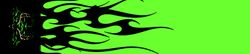 item # shawn shriver 11 FLO GREEN