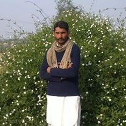 Mian Mohammad
