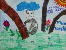 "Caroline Fu, age 6, ""Save the Pandas"""