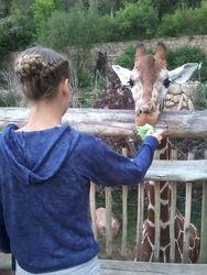 Jordan & Giraffe