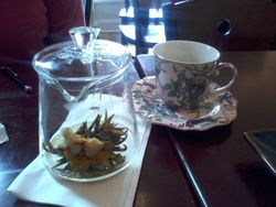 Wisdom Tea House