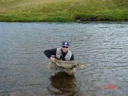 A 10 kg salmon Vatnsdalsá river Iceland
