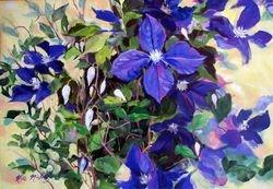 """Claire's Flowering Vine"""
