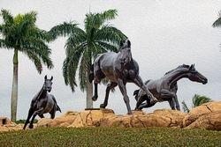 Lely Freedom Horses I