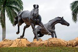 Lely Freedom Horses III