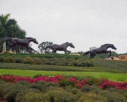 Lely Freedom Horses IV