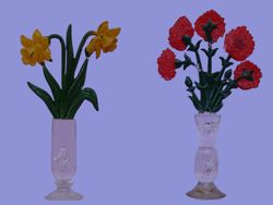 Tortula's  flower shop - 06