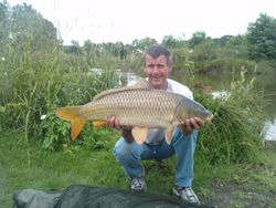Andy Toms 17lb Common The Pit