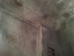 Ceiling Old lave and plaster exposed