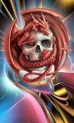 Skull n Dragon