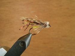 Hopper From Bert Webb
