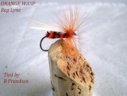 Orange Wasp Lyne