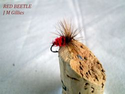 Red Beetle Gillies