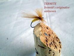 Termite unknown