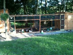 Chinley Chicken Housing