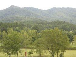 View from Dillard House Georgia