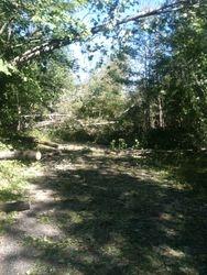 Storm Clean Up September 2014