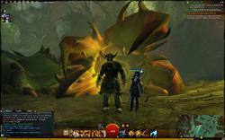 Guild Wars 2 Swamp Worm