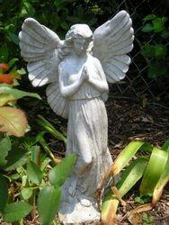 My Garden Angel
