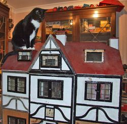 Cat on a hot Lines roof?