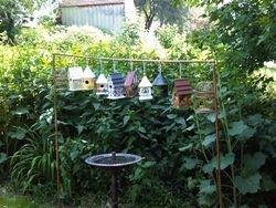 Ally's Bird Houses