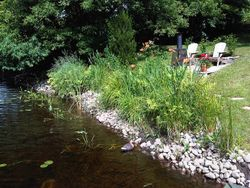Naturalizing the Water Front