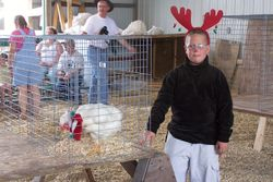 Pretty Poultry Contest at Beltrami County Fair