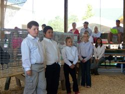 4-H Cloverbuds at Beltrami Co Poultry Show