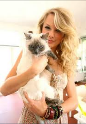 Taylor with her old cat