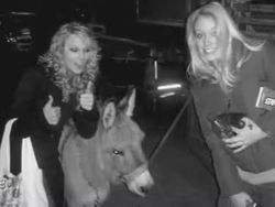 Taylor, Emily and a donkey