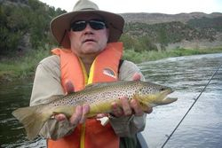 Green River, UT Brown Trout