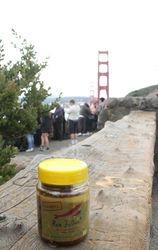 Di Golden Gate Bridge