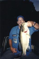 Bass at Night
